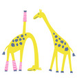 cute yoga giraffe isolated cartoon vector image