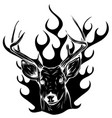 deer sketch graphics color head with horns vector image