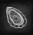 oyster chalk sketch vector image vector image