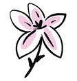 simple sketch of a black and pink lily flower on vector image