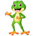 cute frog cartoon posing vector image