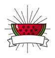 fresh organic fruit watermelon banner vector image vector image
