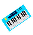 isolated keyboard instrument vector image
