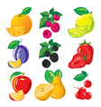 set of ripe fruit and slices of fruit berries vector image