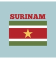 surinam country flag vector image