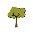 tree nature ecology vector image