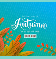 autumn sale background fall floral design vector image vector image