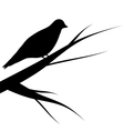 bird sitting on a tree vector image vector image