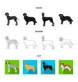 dog breeds blackflatoutline icons in set vector image vector image