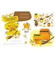 flat organic honey colorful concept vector image vector image