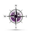 purple compass vector image vector image