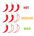 red hot chili pepper level vector image vector image