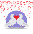 valentine greeting card doves love heart symbols vector image vector image