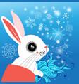 winter portrait a hare vector image vector image