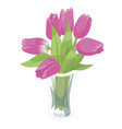 glass transparent vase with pink tulips flat vector image