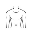 male torso related thin line icon vector image