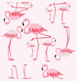 pink flamingo seamless pattern vector image vector image