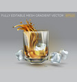 splash whiskey in a glass and ice cubes vector image vector image