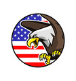 bald eagle in circle badge vector image vector image