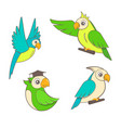 Cute cartoon parrots set on a white background