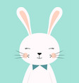 cute cartoon rabbit boy vector image vector image