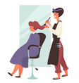 dye hair in beauty salon hairdresser and female vector image