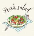 fresh vegetable salad on a plate vector image vector image