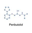 penbutolol vector image vector image