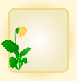 Primrose spring flower gold background frame vector image vector image