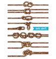 Rope Knots Set vector image