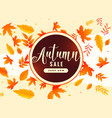 autumn leaves background with sale vector image vector image