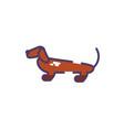 Cute dachshund dog on white background
