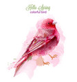 cute pink bird watercolor isolated on white vector image vector image