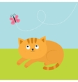Cute red orange cat lying on grass and looking at vector image vector image
