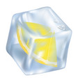 ice cube with frozen slice of lemon closeup icon vector image