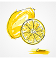 lemon fruits vector image vector image
