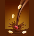 peanut with melted chocolate background vector image vector image