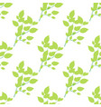 seamless green branch isolated on white vector image vector image