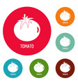tomato icons circle set vector image