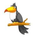 cartoon character cockatoo vector image