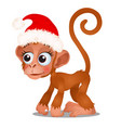 cute monkey in a red cap santa claus isolated vector image vector image