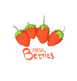 group of strawberries vector image vector image