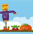 happy scarecrow on vegetable garden vector image