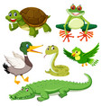 set of green animal vector image