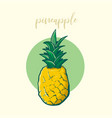 sketch of pineapple vector image vector image