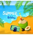 Summer Holidays Background with Tropical Seascape vector image