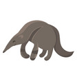 cartoon anteater vector image vector image
