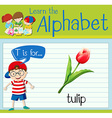 Flashcard letter T is for tulip vector image vector image
