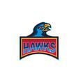 Hawk Head Side Retro vector image vector image