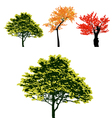 set real colorful autumn tree collection vector image vector image